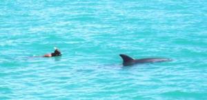 John mit Delfin 2